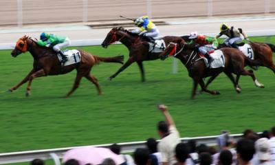 Horse Racing Finish
