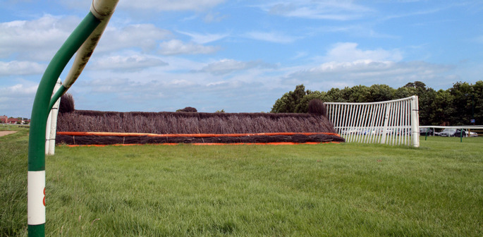 Horse Racing Fence