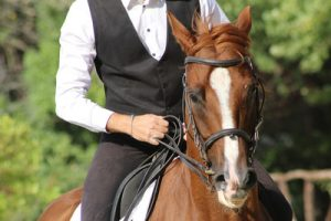 Man in Waistcoat on Horse