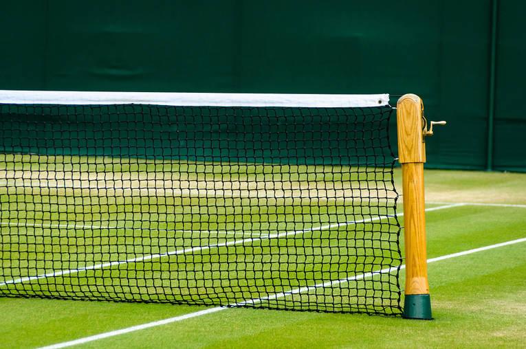 Grass Tennis Court and Net