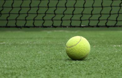 Tennis Ball on Grass Court
