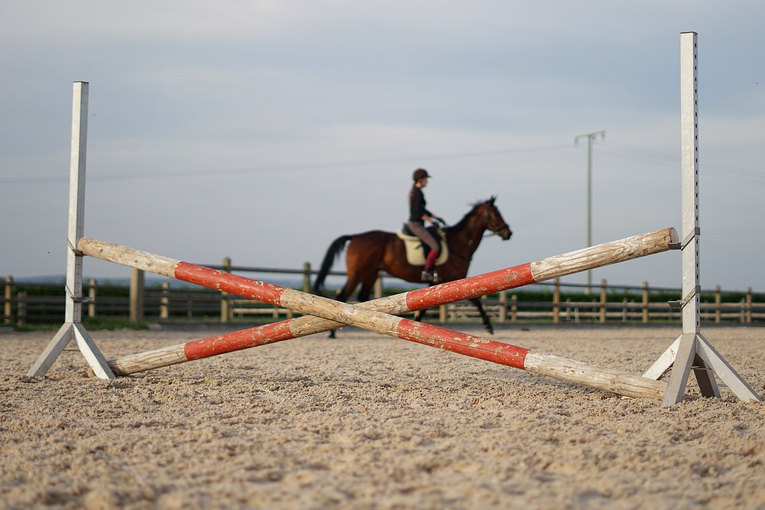 Show Jumping Obstacle