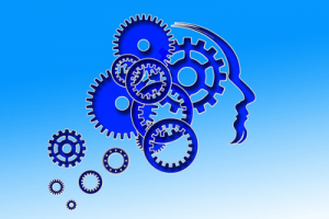 Mind Workings Image