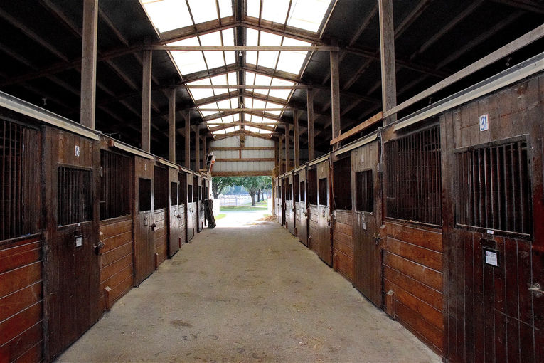 Empty Stables