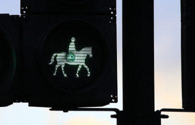 Horse Green Crossing Light