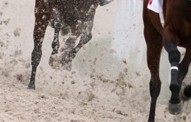 Horses Racing on Sand