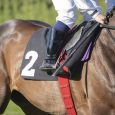 Jockey Riding Number 2 Horse