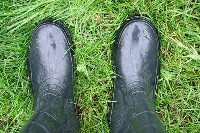 Wellington Boots on Grass