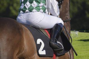 Jockey Riding Horse Number 2