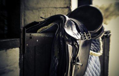 Saddle on Stable Door