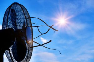 Sunshine and Fan