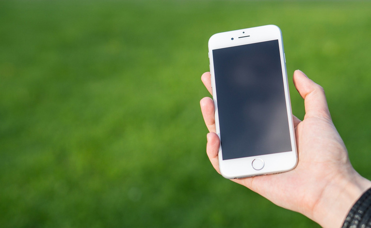 Smartphone Held In Front of Grass