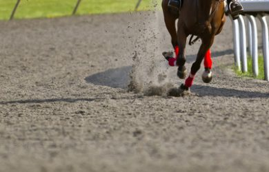 Horse Racing on Bend in Sand