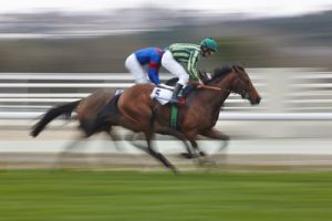 Blurred Horses Racing