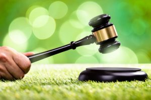 Gavel Struck on Grass Pitch