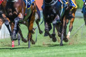 Horses Galloping During Race