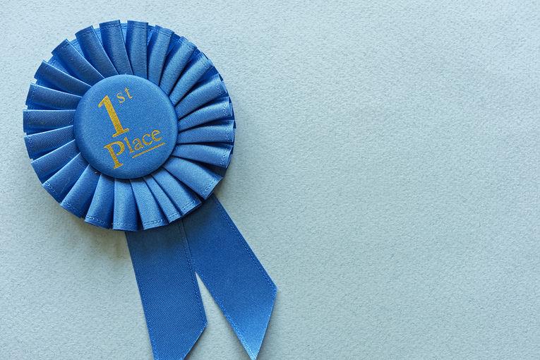 Blue 1st Place Rosette