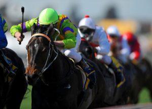 Horse Race Leader