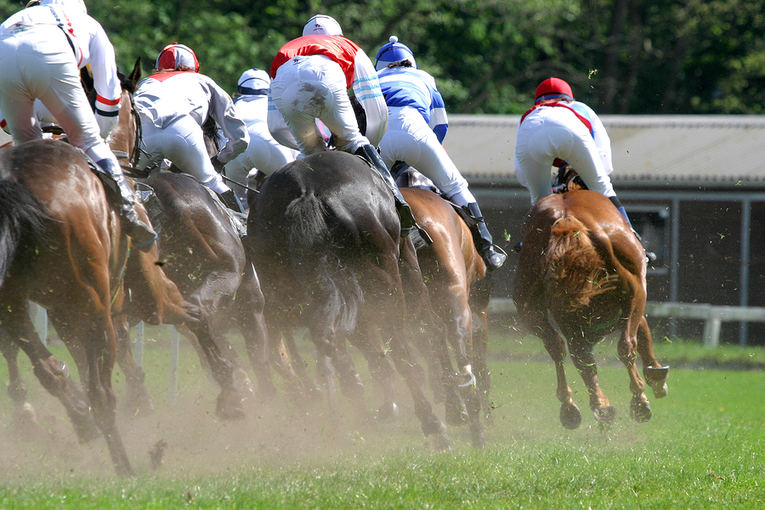 Horse Race Viewed From from Behind the Field