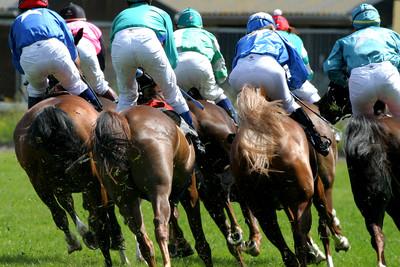 Horse Race Behind Field