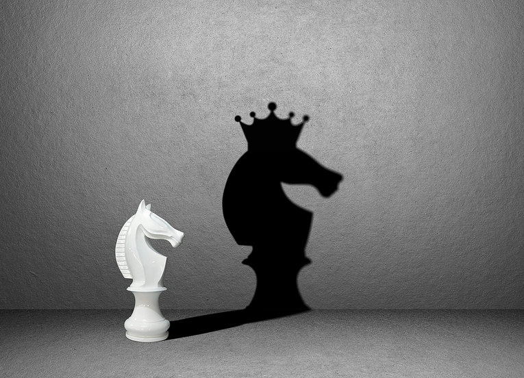 Knight Chess Piece with Crown Shadow