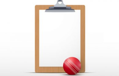 Clipboard and Cricket Ball