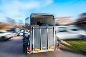 Horse Transporter with Blurred Surroundings
